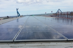Solar Module Cleaning