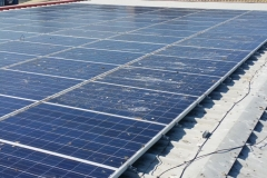 Solar Panel System Cleaning