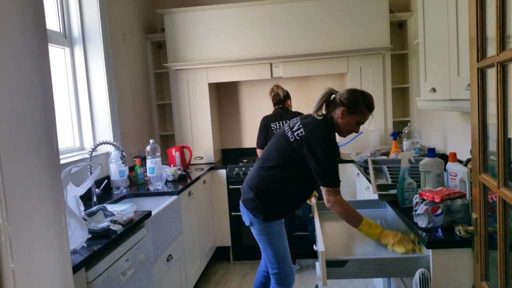 Cleaners in Kitchen